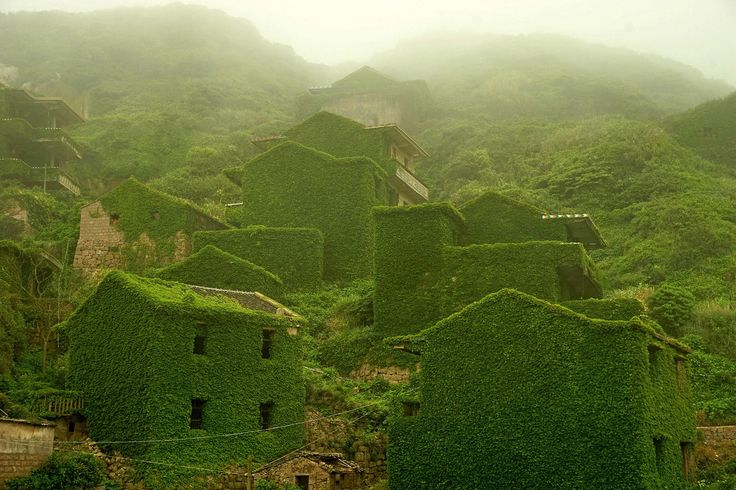 art of nature on abandoned village